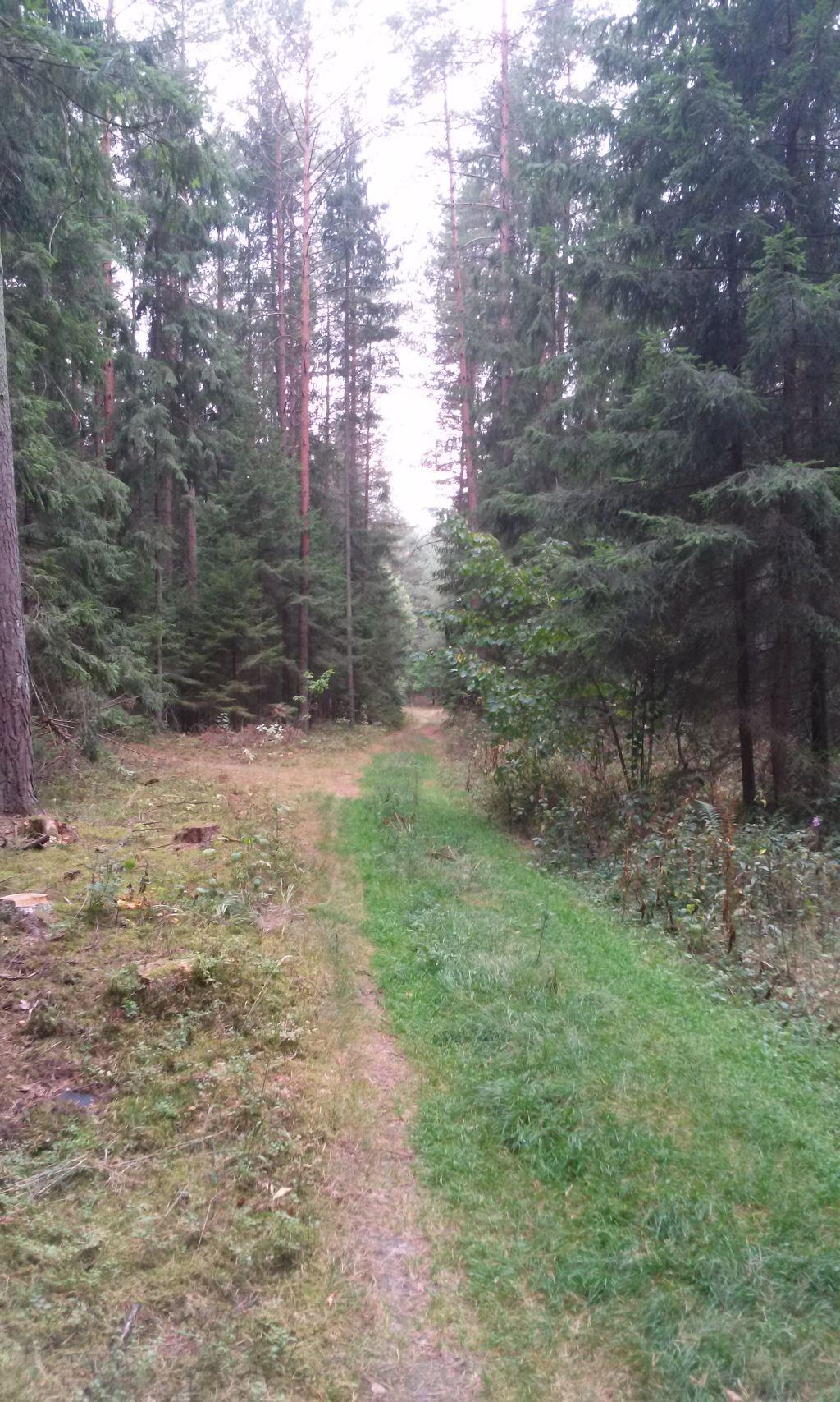 Trasy rowerowe Supraśl - Puszcza Knyszyńska 8