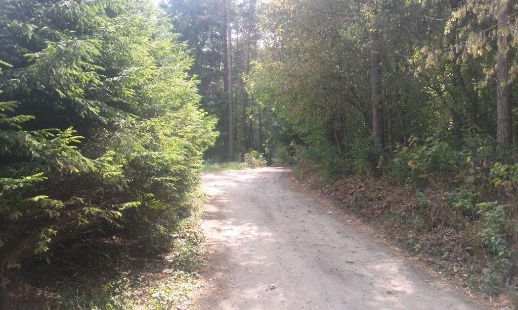 Trasy rowerowe Supraśl - Puszcza Knyszyńska 2