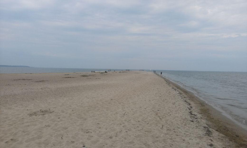 Piaszczysta plaża w Rewie 4