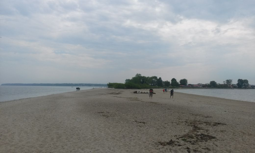 Piaszczysta plaża w Rewie 6