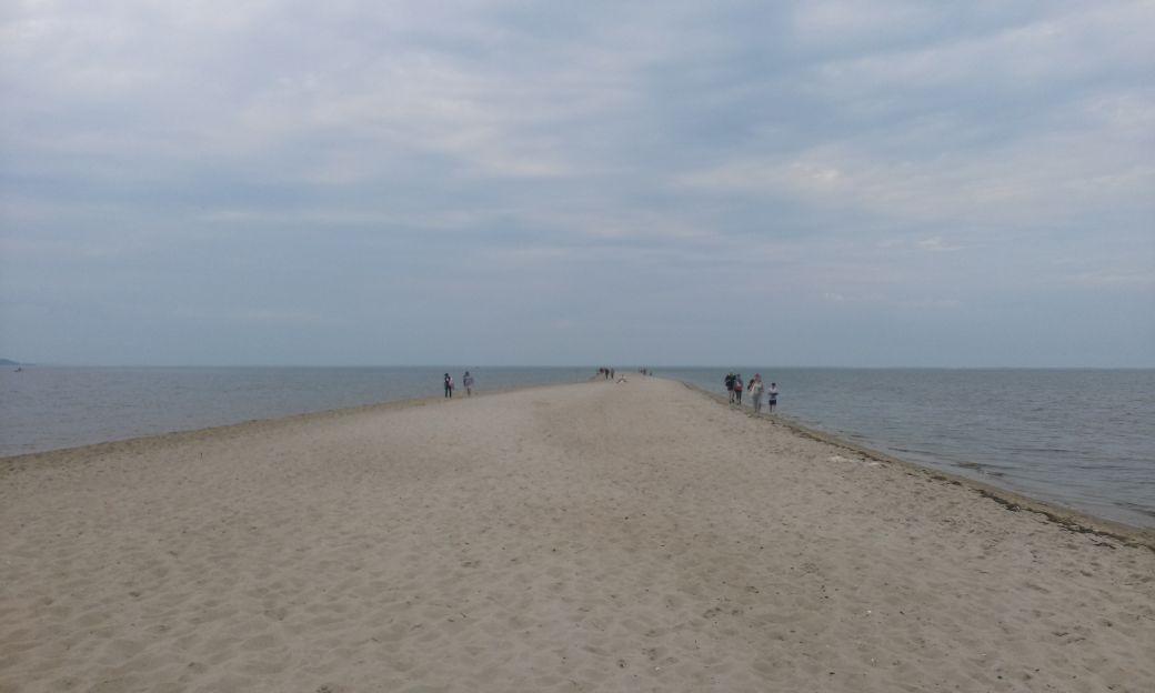 Piaszczysta plaża w Rewie 7